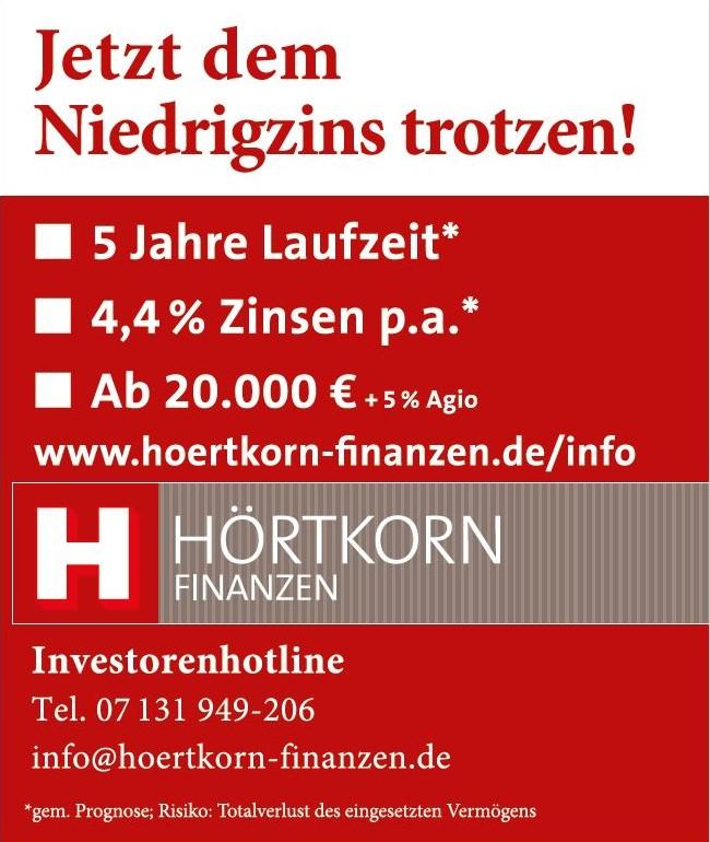 Anzeige Heilbronner Stimme